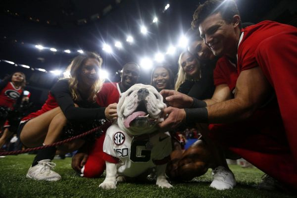 Georgia cheerleaders pose with the school mascot