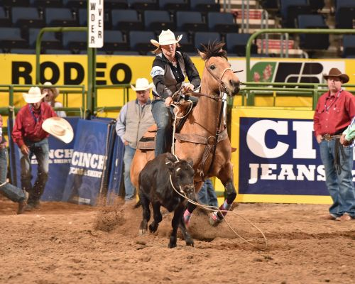 Second generation college rodeo contestant Quincy Segelke tied for first in the breakaway roping during Bulls Broncs and Breakaway at the College National Finals Rodeo. She stopped the clock in 2.1 seconds to earn valuable points for Chadron College.