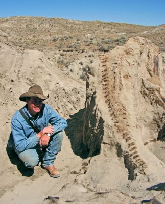 One of America's greatest fossil specimens ever unearthed, the Montana Dueling Dinosaurs, was discovered in 2006 by Clayton Phipps, also known as The Dinosaur Cowboy.