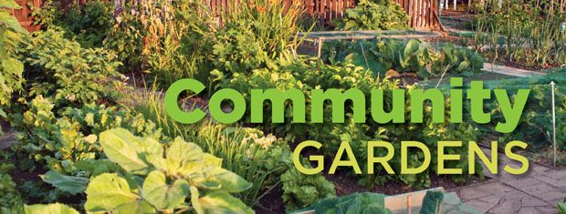Applications are now available for plots in two locations of the Sturgis Community Gardens. Applications are available on line and at the City Finance Office through March 31, 2018.