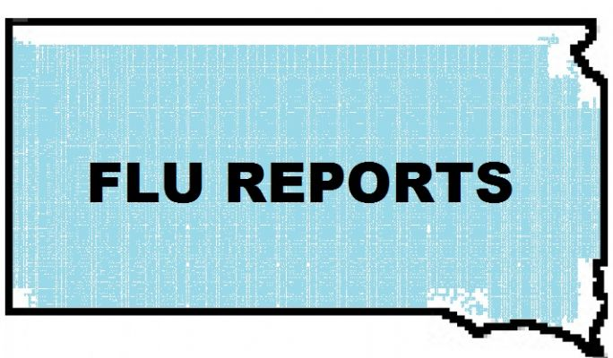 SD-Flu Update