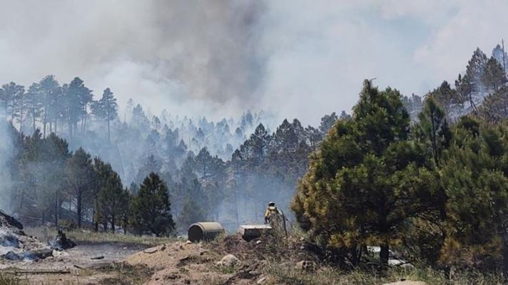 Fire burning in Custer State Park