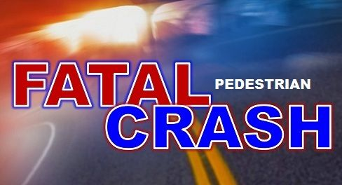 Fatal Vehicle vs Pedestrian Accident