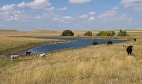 Livestock producers in drought-stricken states like North and South Dakota are encouraged to test water supplies before turning out livestock. Limited snowfall and hot dry windy conditions have increased the possibility of poor quality water this spring.